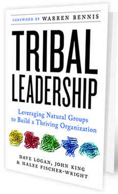 Tribal Leadership cover